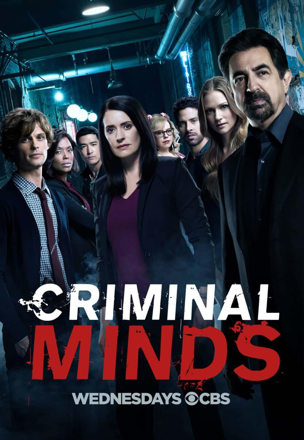 Criminal Minds – Saison 13