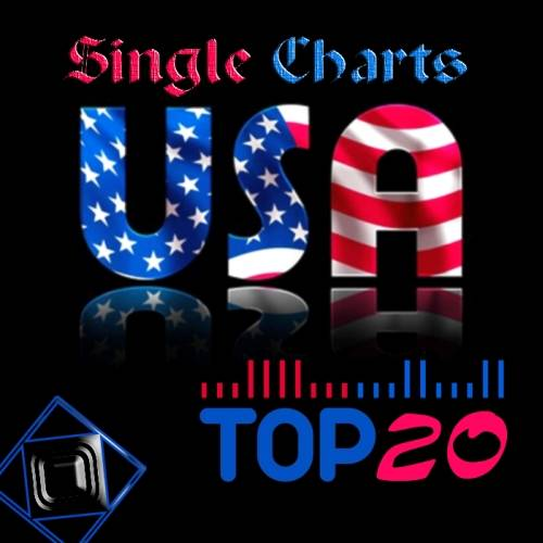 US TOP20 Single Charts (06 - 07 - 2013)