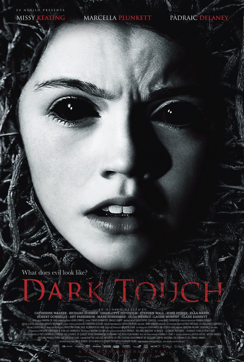 Dark Touch [BRRiP] [VOSTFR] [MULTI]