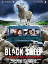 Black Sheep (Vostfr)
