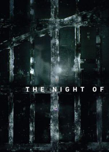 The Night Of – Saison 1