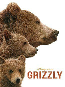 Grizzly en streaming