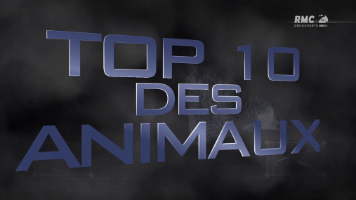 [Multi] Top 10 des animaux Venimeux [FRENCH | 720p HDTV]