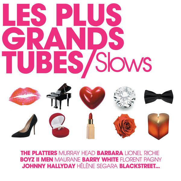 [MULTI] Les Plus Grands Tubes Slows (2013)