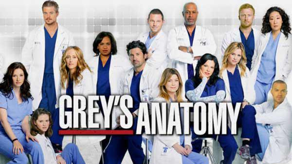 Grey's Anatomy – Saison 12