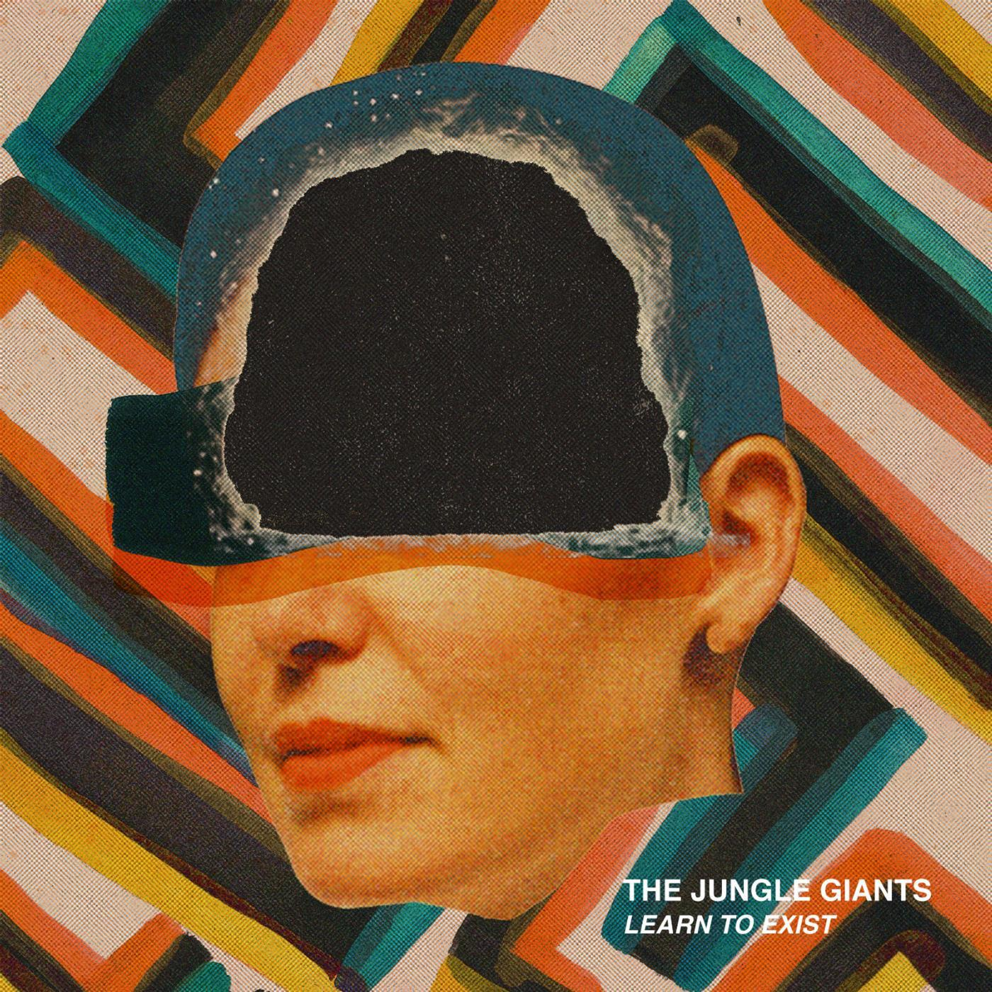 The Jungle Giants - Learn To Exist (2013) [MULTI]