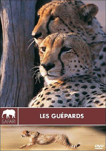 Collection Safari - les Guépards [DVDrip] [fr]