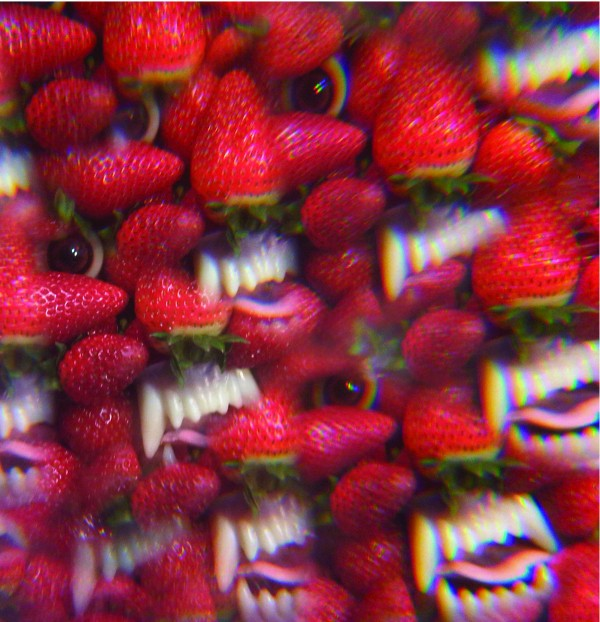 Thee Oh Sees - Floating Coffin (2013) [MULTI]
