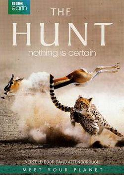 The Hunt Saison 1