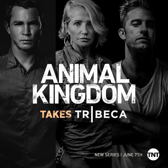 Animal Kingdom Saison 2 Vostfr