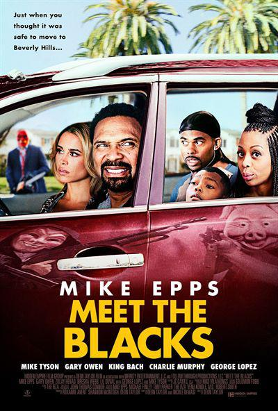 Meet The Blacks FRENCH BDRIP