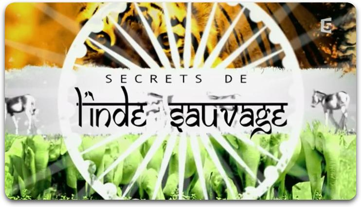 [Multi] Secrets De L'Inde Sauvage [E03/03] [FRENCH | HDTV]