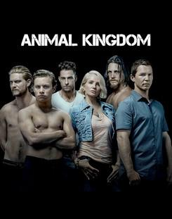 Animal Kingdom – Saison 1 (Vostfr)