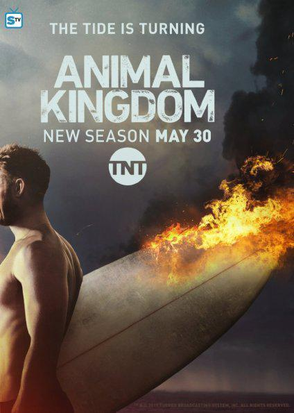 Animal Kingdom – Saison 2