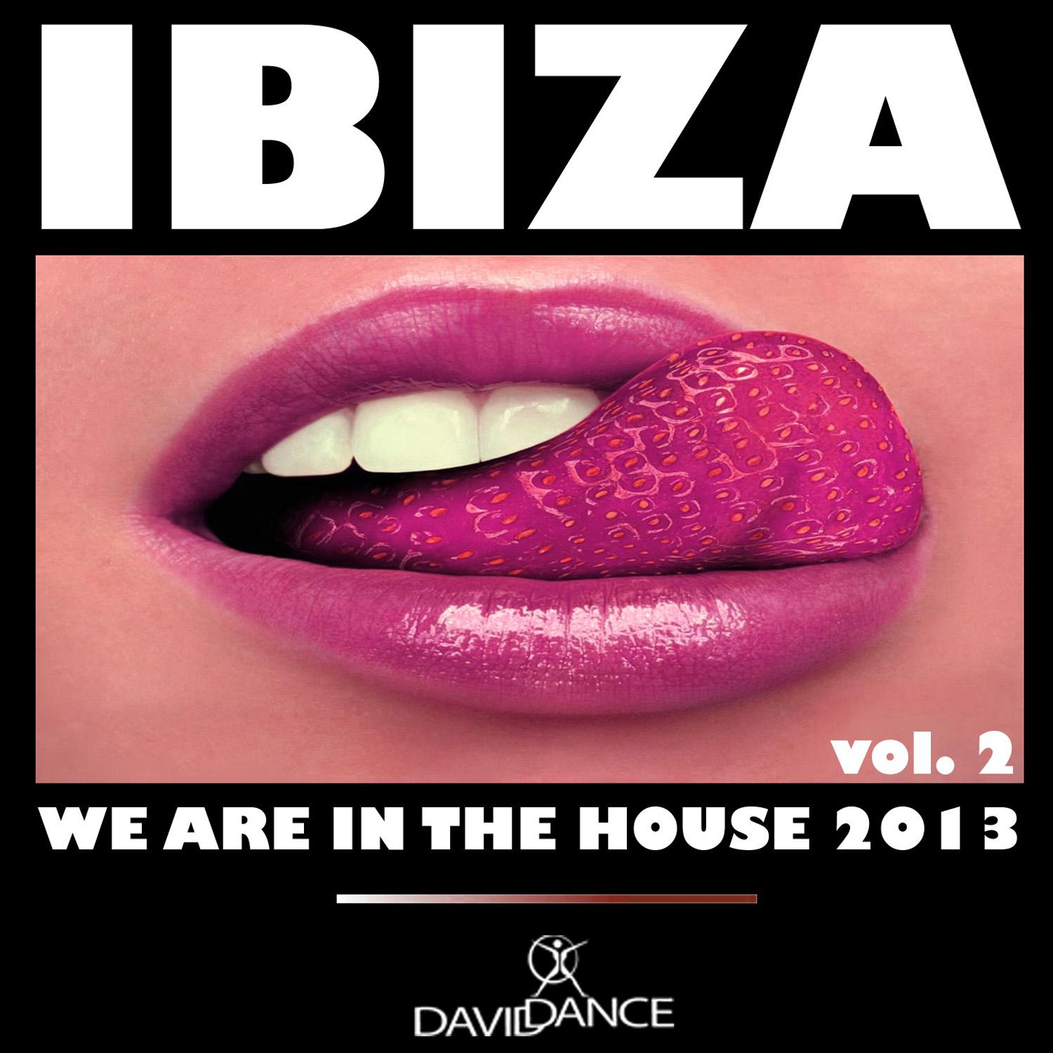 Ibiza 2013 - We Are in the House Vol 2 (2013) [Multi]
