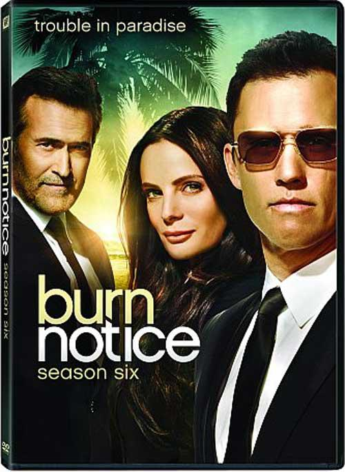 Burn Notice – Saison 6