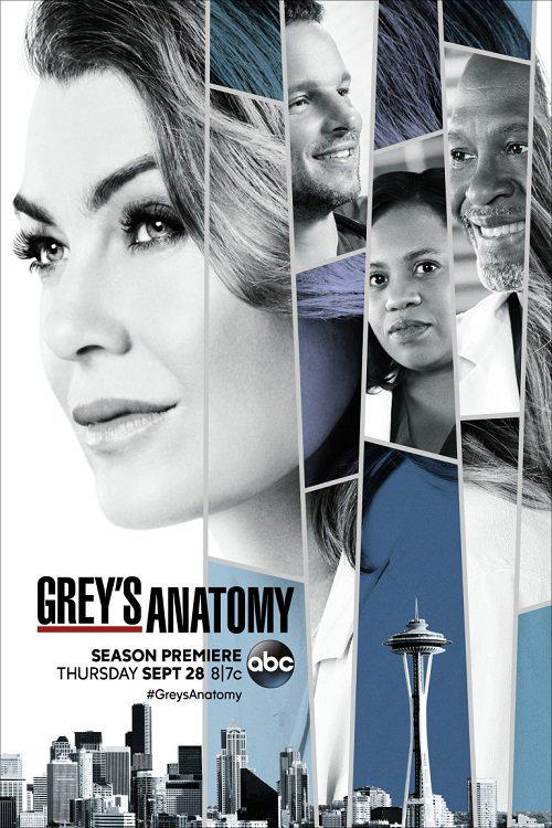 Grey's Anatomy - Saison 14 [COMPLETE] [24/24] FRENCH | Qualité HD 720p