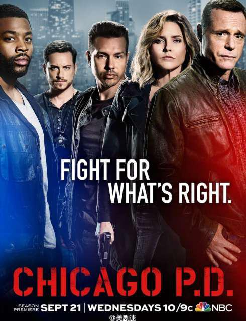 Chicago Police Department - Saison 5 [COMPLETE] [22/22] FRENCH | Qualité HD 720p