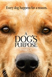 A Dog's Purpose 2017 (VO)