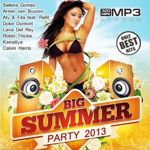 [Multi] Big Summer Party (2013)