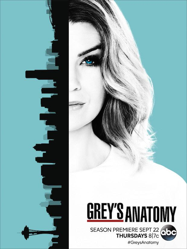 Grey's Anatomy – Saison 13