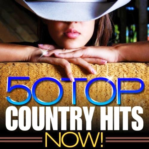 US Top 50 Country Hits (2013) [Multi]