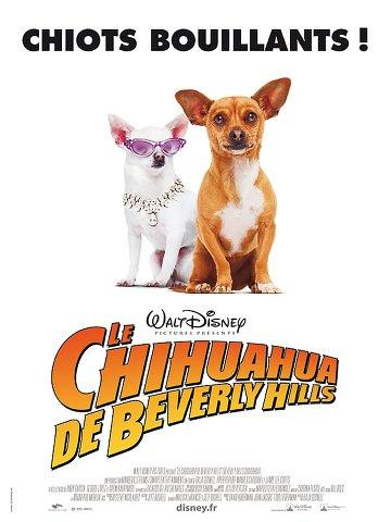 Download Movie Le Chihuahua de Beverly Hills [DVDRip]