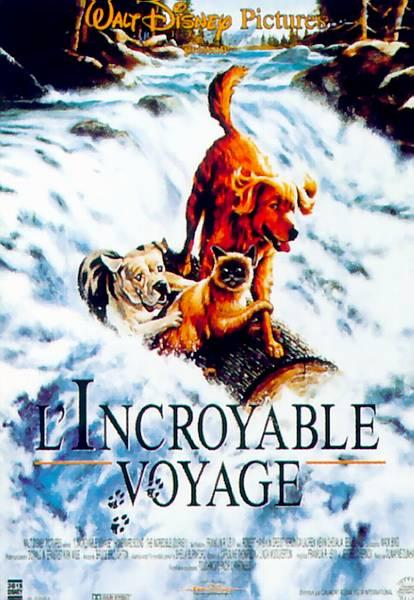 L'Incroyable Voyage [FRENCH] [DVDRiP] [MULTI]