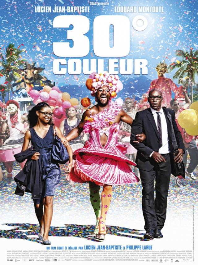 30° Couleur (2012) [SUBFORCED-FRENCH] [DVDRIP] 1cd & AC3